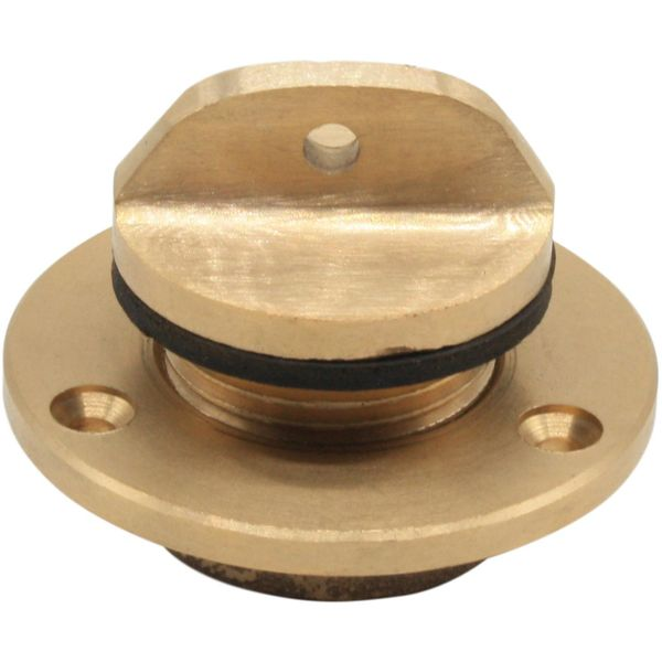 "Seaflow Bronze Drain Plug Assembly (1"" BSP Male Thread)"