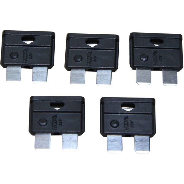 ASAP Electrical Blade Fuse (1 Amp / 5 Pack)