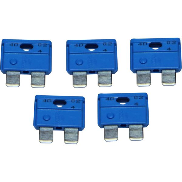 ASAP Electrical Blade Fuse (15 Amp / 5 Pack)