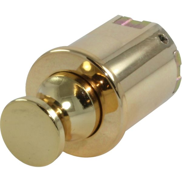 4Dek Knob Latch for Cabinet Doors & Drawers (Gold Finish)