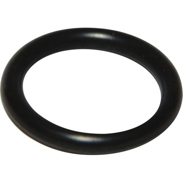 PRM 04301526 Selector Shaft O Ring (PRM Delta & 150)